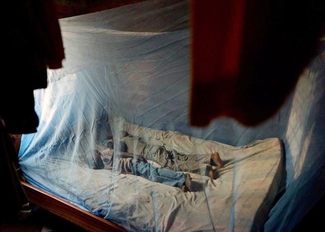 Lapset_malariaverkon_alla